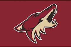 NHL's Arizona Coyotes eye Tempe for new arena